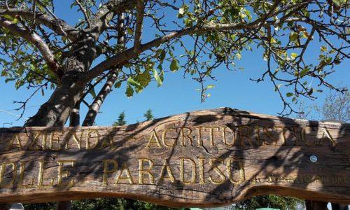insegna-colle-paradiso